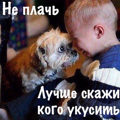 Не плачь картинки прикольные