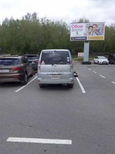 Фотоохота на басы в Томске - IMG_20170526_160131.jpg